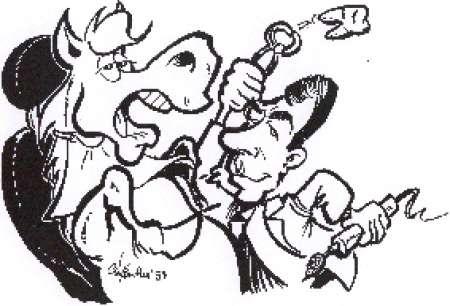 Photo ads/474000/474174/a474174.jpg : Soins dentaires aux chevaux